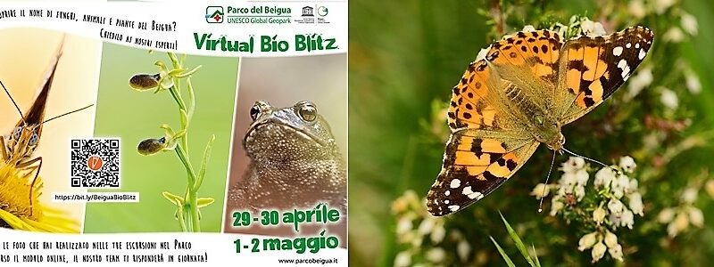 Parco Beigua, fotografia, curiosità