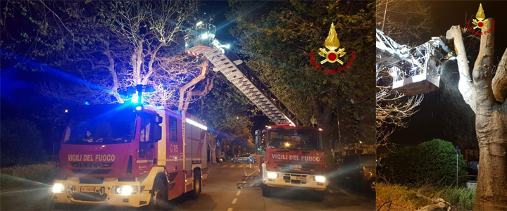 Vigili del fuoco Savona, cronaca