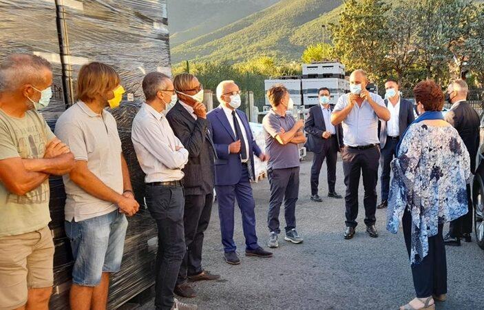 basilico genovese, bellanova teresa, economia