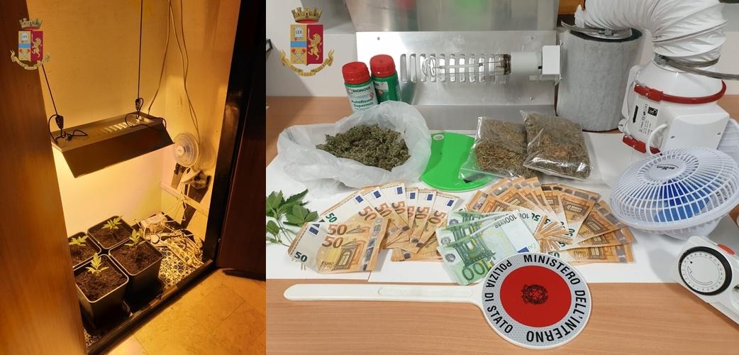 Genova cronaca breve. Dal pusher uscito di galera in estate e vi rientra ora a chi coltiva cannabis nell'armadio, chiuso un kebab