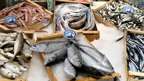 gastronomia, pranzi natalizi, pesce ligure