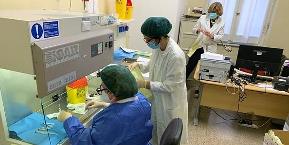 Coronavirus Liguria oggi 28 dicembre, 173 nuovi casi positivi di cui 12 a Savona e 113 a Genova