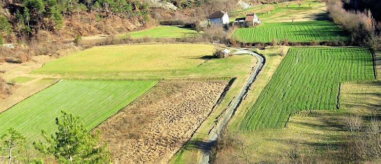 contadino lavoro no covid, agricoltura lavoro sicuro