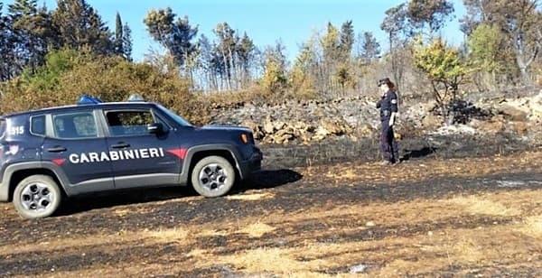 Incendi, dopo il divieto in Liguria denunciato agricoltore, rischia 5 anni
