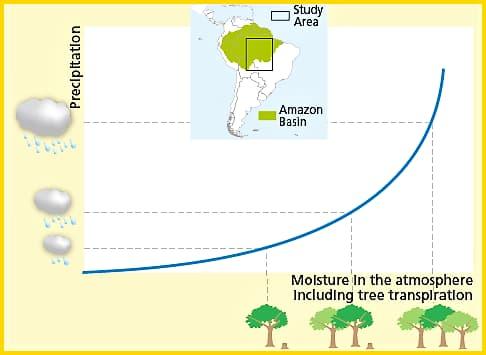 Cnr, perché la deforestazione in Amazzonia riduce le piogge