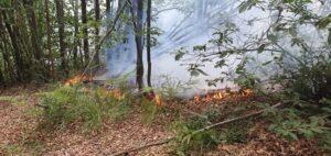 Giovo moglie incendio a Sassello oggi