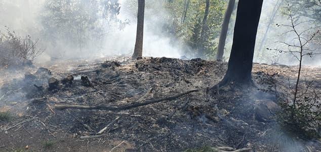 Incendio a Sassello nel bosco sopra la segheria prima di Giovo