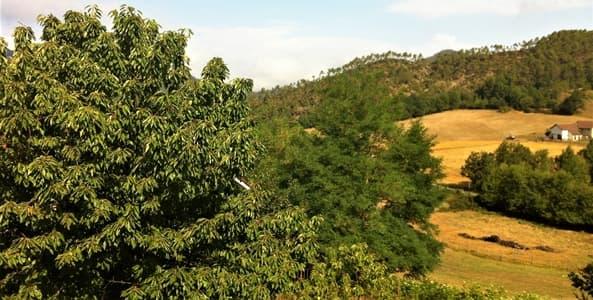 Valle Erro e Valbormida Aree Interne per l'accesso a nuovi fondi