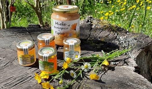 Anche il miele di Sassello al Concorso Mieli dei Parchi della Liguria
