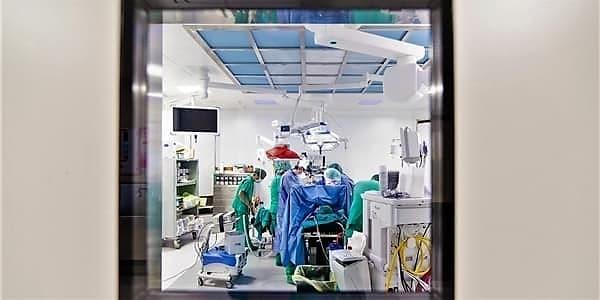 Sclerosi multipla, cellule staminali mesenchimali sicure ma non fermano